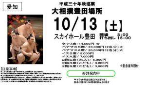 10.13大相撲豊田