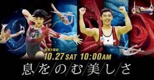 豊田国際体操2018