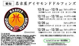 12.8~12.30名古屋ダイヤモンドドルフィンズ