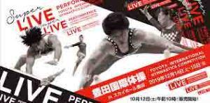 豊田国際体操